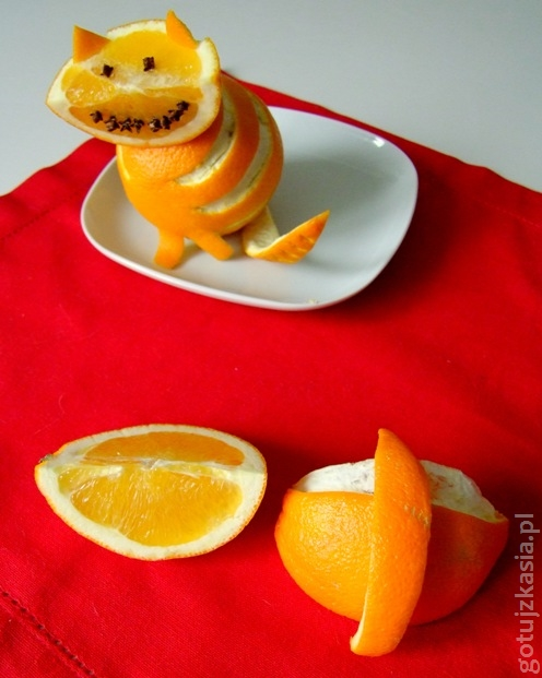 kot z pomaranczy 3