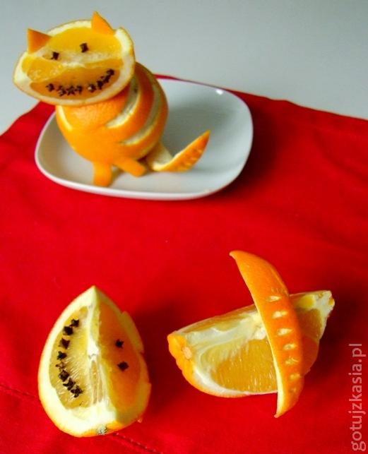kot z pomaranczy 4