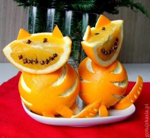 kot z pomaranczy 5